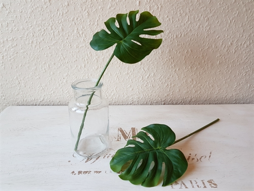 Monstera-blad, 2 stk